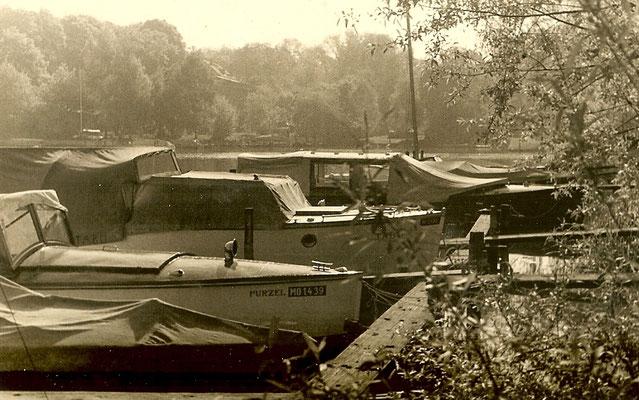 Bootsstände 1951