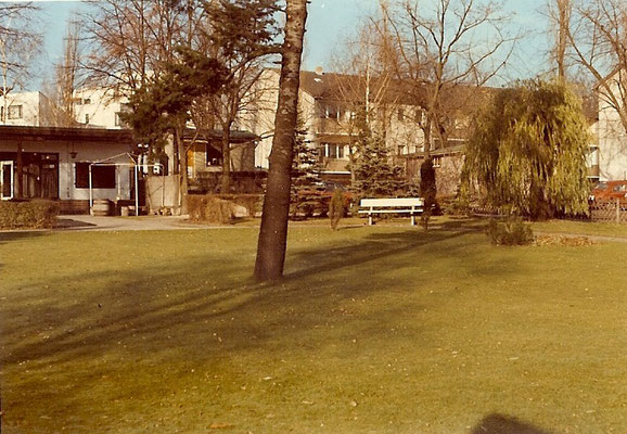 Herbst an der Havelseite 1971
