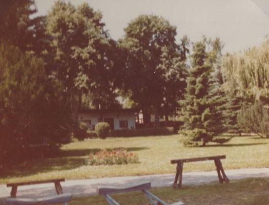 Blick auf die große Wiese im Sommer 1983