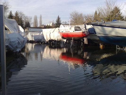 17.01.2011 - Das Hochwasser erreicht fast die Ausstellungshalle, der Bootsbauer steht bereits unter Wasser