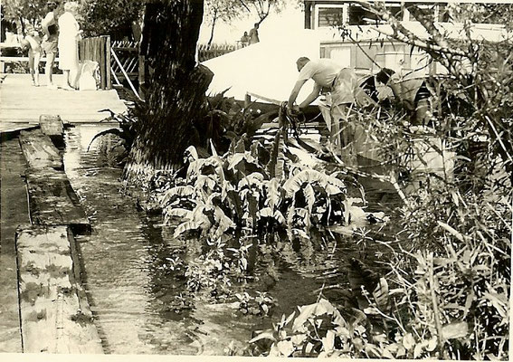 Hochwasser im Juni 1961