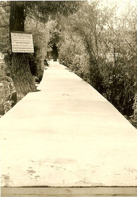 13. September 1961 - Die neue Betonbuhne ist fertig