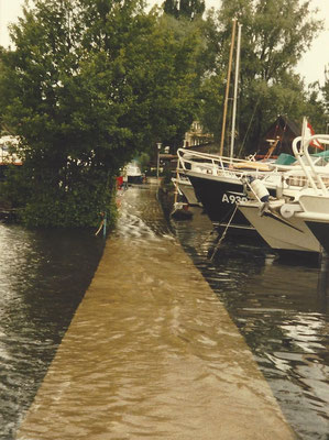Unsere Buhne am  07. Juni 1986 unter Wasser