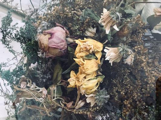 Ludovica Baldini (RUFA), 2019 - teca in vetro con fiori secchi