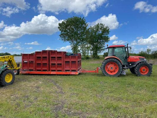Le transport des plants de vigne