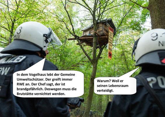 Räumung Hambacher Forst, Anfang....