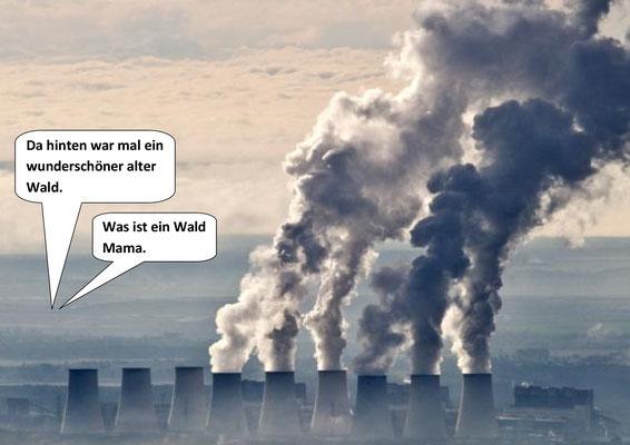 Räumung Hambacher Forst, ...Ende
