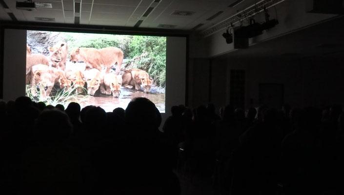 ... und die wunderbare Tierwelt der besuchten Länder in großartigen Bildern und Filmen.