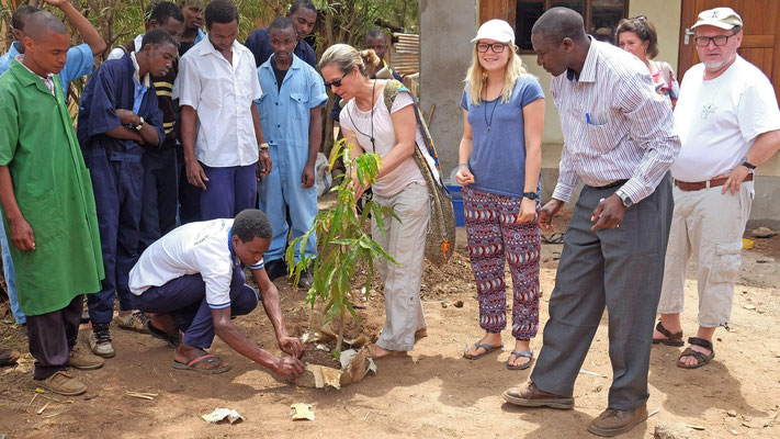 Planting a tree at the VTC Moshi, where the group was accommodated.