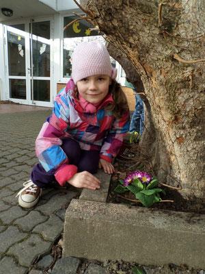 Frühjahr 2014 Niels-Stensen Grundschule Hameln