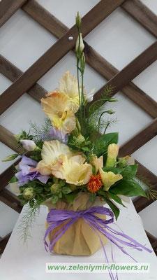 купить цветы в коробке казанская