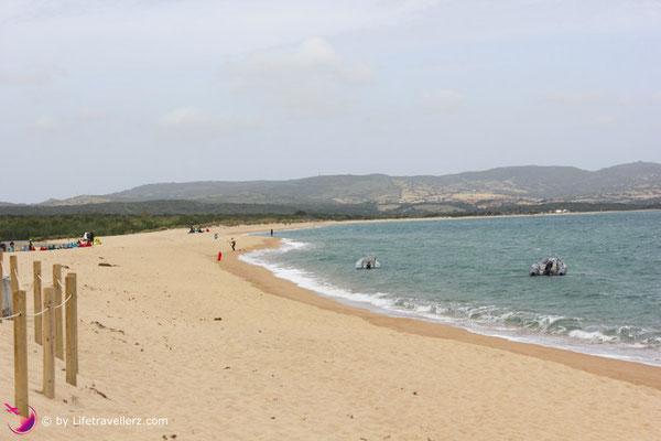 Kitesurfen lernen auf Sardinien