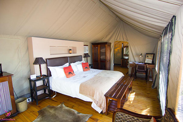 Buffelsdrift Game Lodge - Safari nahe Kapstadt