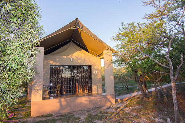 Glamping in Südafrika - Übernachten in der Cheetah Paw Eco Lodge