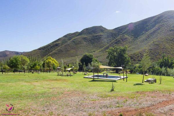 Entspannung und Outdoor im Pat Busch Mountain Reserve