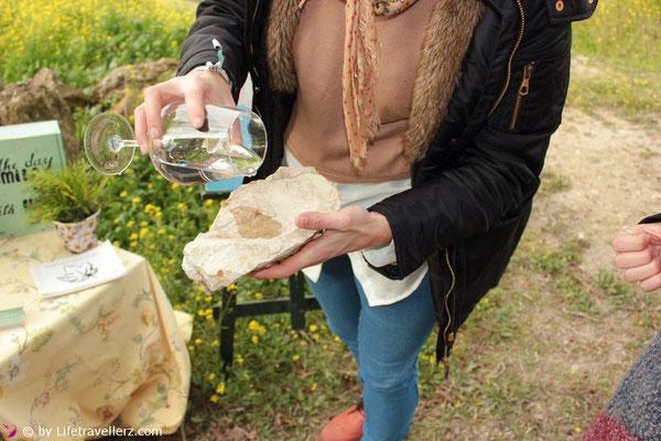 Kalkboden unter den Sherry-Weinbergen in Andalusien