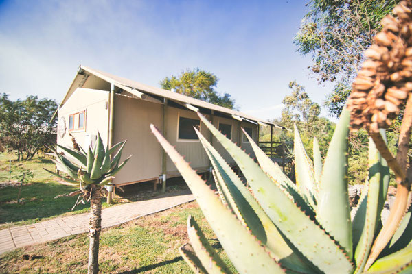 AfriCamps in Swellendam
