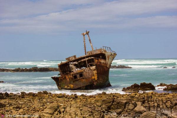 Sommerurlaub im Winter: Südafrika - Struisbaai