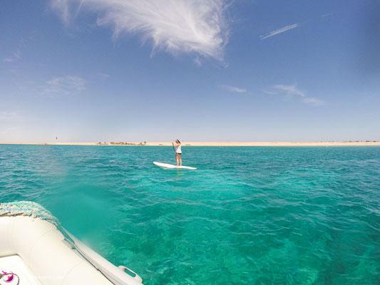 Stand up paddlen im roten Meer
