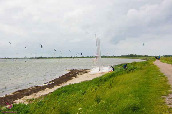 Kitespotguide Ostsee Fehrmarn Gold