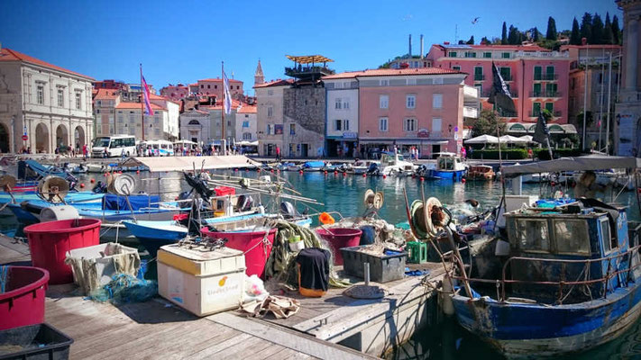 Hafen in Piran Slowenien