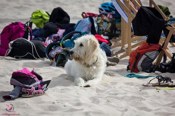 Strandleben an der Ostsee