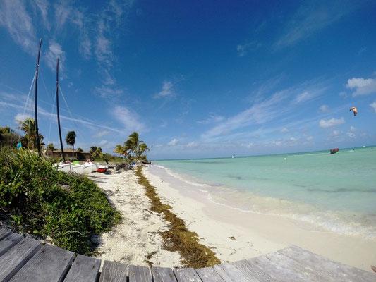 Strand auf Cayo Guillermo auf Kuba