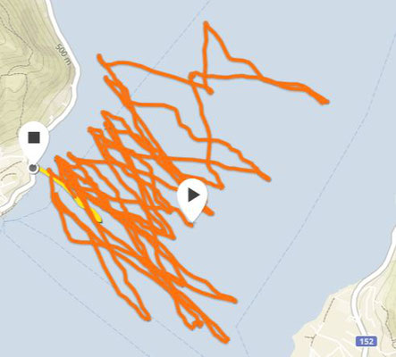 Kitefoil Session GPS Track