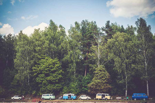 VW Busse am Wald, VW Bus mieten oder VW Bus kaufen by Lifetravellerz