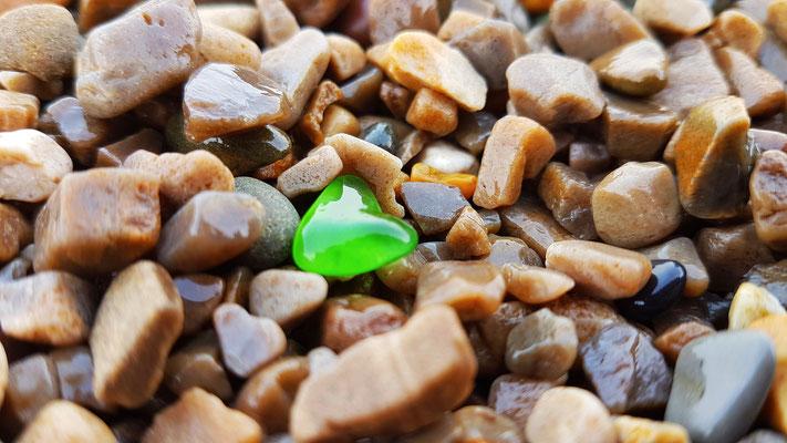 coeur vert © Laetitia Rousseau