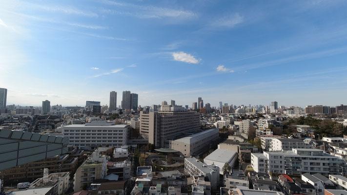 菱和パレス高輪TOWERの14階非常階段からの眺め。中央に見えるのがNTT東日本関東病院。