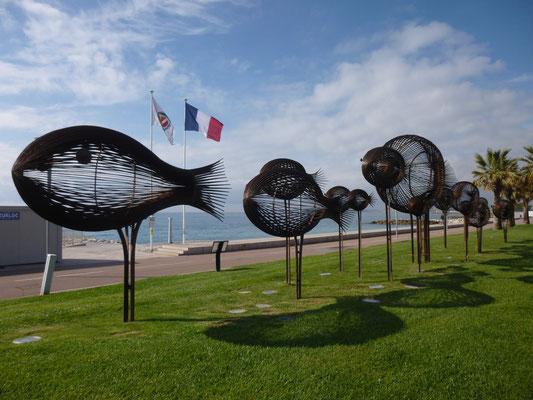 les poissons de Saint Laurent du Var