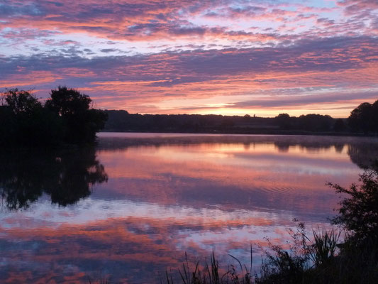 étang de Baye au lever du soleil