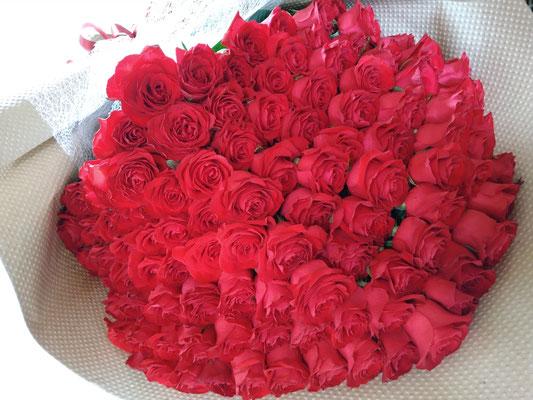 PB24 赤薔薇108本(永遠(とわ))