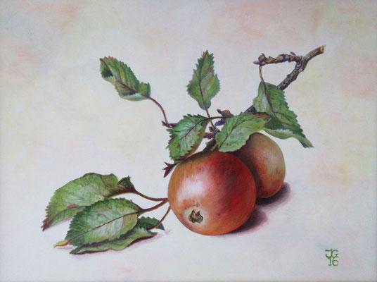 Naar een aquarel van Johannes Reekers 30x40 cm