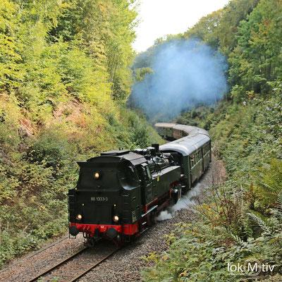 86 1333-3 mit einem Sonderzug zwischen Sehma und Walthersdorf