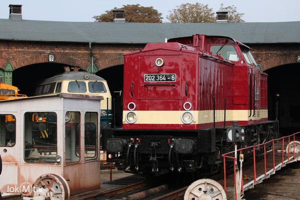 202 364-6 in Staßfurt (09/2017)
