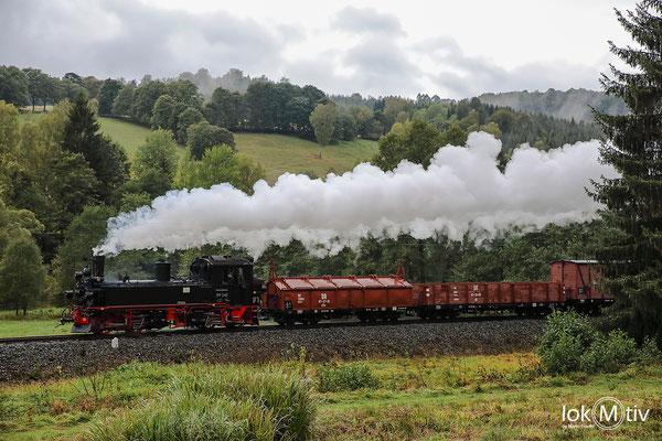 99 542 mit einem Güterzug zwischen Forellenhof und Schmalzgrube