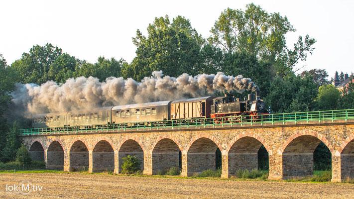 91 134 auf dem Viadukt über die Zschopauaue in Braunsdorf (08/2019)