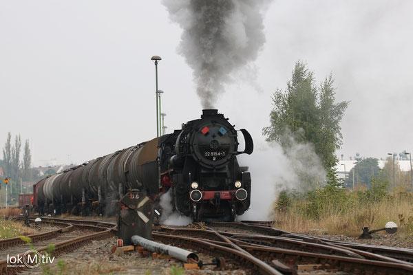 52 8154-5 mit Fotozug in Staßfurt (06/2017)