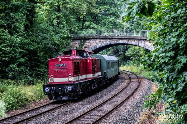 Kurz nach dem Bahnhof Hartenstein unterquert der Zug die Brücke bei der Burg Stein