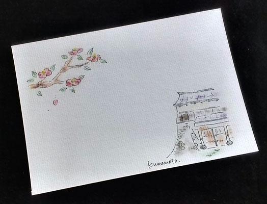 熊本地震復興募金絵はがき/熊本城西大手門と肥後山茶花