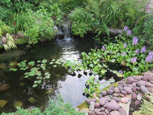 Concours ''Jardins privés 2018'' : Troisième choix du public, Mme. Pauline Jacques de Donnacona.