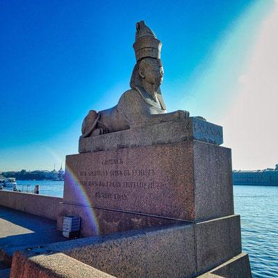 Sphinx an der Newa