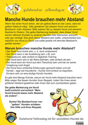 Flyer Deutsch