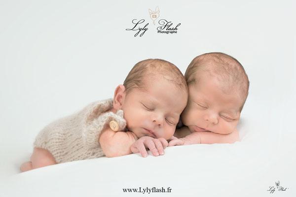 photographe var bébés jumeaux