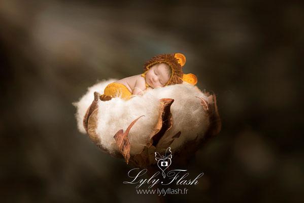 photographe naissance  La garde