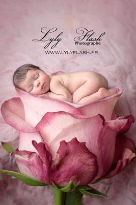 photographe naissance  Marseille