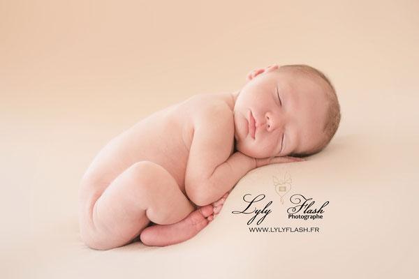 photographe newborn posing toulon