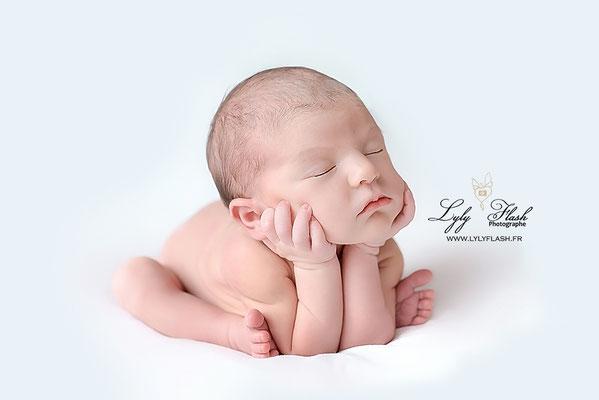 photographe nouveau-né  bébé Régusse